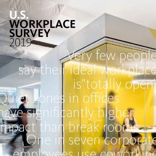 U.S. Workplace Survey 2019